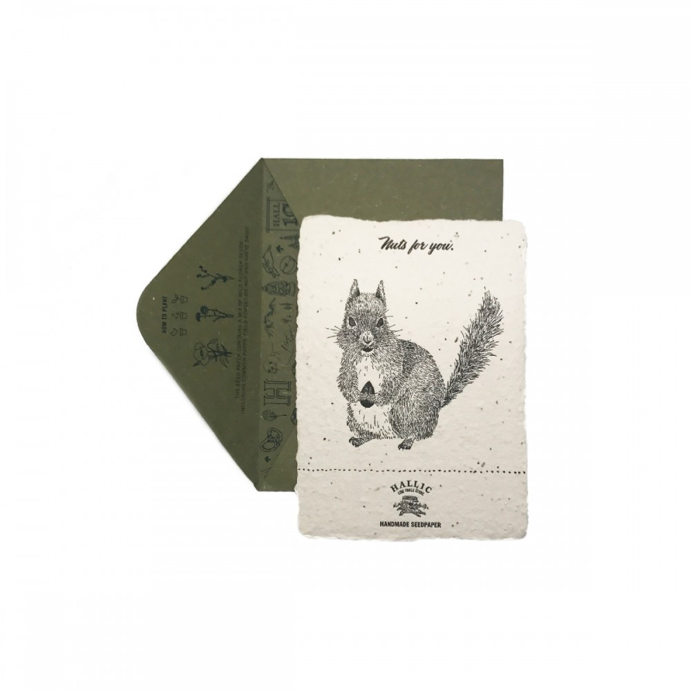 Handmade-Seed-Cards-squirrel